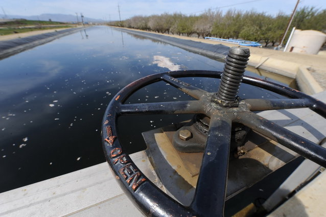 Aceasta ar putea fi următoarea megastructură a României: Canalul Siret-Bărăgan, o investiţie de 3,5 mld. euro, ar pune la adăpost aproape 10% din agricultură