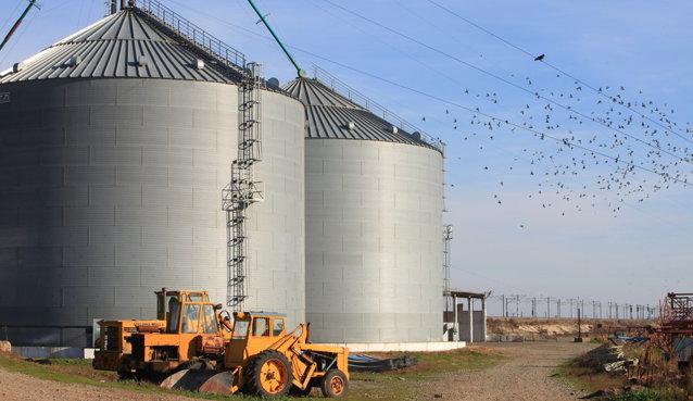 Cum s-a schimbat agricultura după cinci ani de fonduri europene: silozuri de 2,5 milioane de tone de cereale, 9.000 de tractoare şi 25% mai multe îngrăşăminte