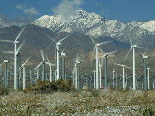 """Primul pe lista de termeni-cheie a secolului XXI: """"sustenabil"""""""