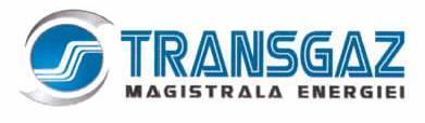 Transgaz Mediaş