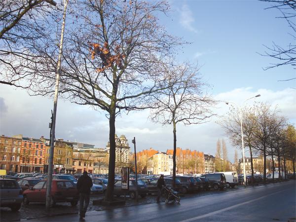 Dupa-amiaza la Anvers