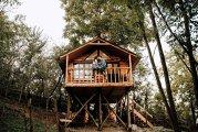 Căsuţe în copac pentru oameni mari: Cum arată două dintre cele mai frumoase astfel de proiecte, făcute de la zero de două cupluri de tineri antreprenori? Galerie Foto