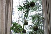 Verdele de la exterior s-a mutat în apartamente în ultimul an şi chiar mai mult, aşa că aranjamentele din plante - cu, dar mai ales fără flori - au câştigat teren. Cum le alegem şi cum le îngrijim?