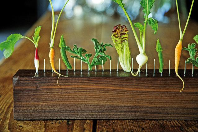 Restaurantul în care nu ştii niciodată ce vei mânca: Meniul se poate schimba zilnic sau chiar oră de oră în funcţie de ingredientele disponibile
