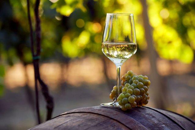 "Chateau Valvis Chardonnay, un vin premium românesc de la Domeniilor Sâmbureşti, a fost medaliat cu aur la Concursul ""Vinalies Internationales"" de la Paris"