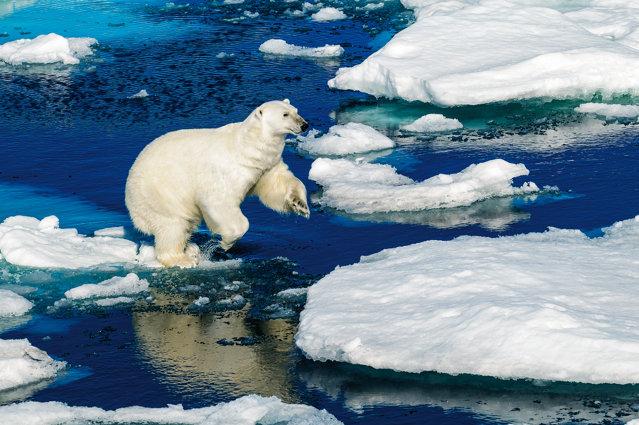 Svalbard, Norvegia