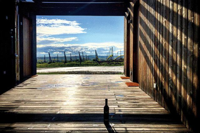 Reportaj sub soarele Transilvaniei sau cum se trăiesc experienţe de stele Michelin la nea Gheorghe în stână cu un pahar de vin. Galerie foto