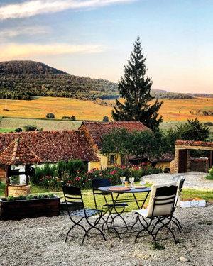 Reportaj din Transilvania. Cu peisaje demne de o pictură impresionistă, cu dealuri domoale, presărate cu viţă-de-vie sau cu turme de oi. O Toscana în miniatură