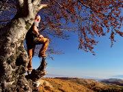 Un român, pe numele lui de Paul Buchfellner, şi-a petrecut o bună parte din viaţă în Germania. Apoi, s-a întors acasă şi a fondat agenţia de turism Karpaten Outdoor Tours pentru că a vrut să le arate străinilor ce are România de oferit