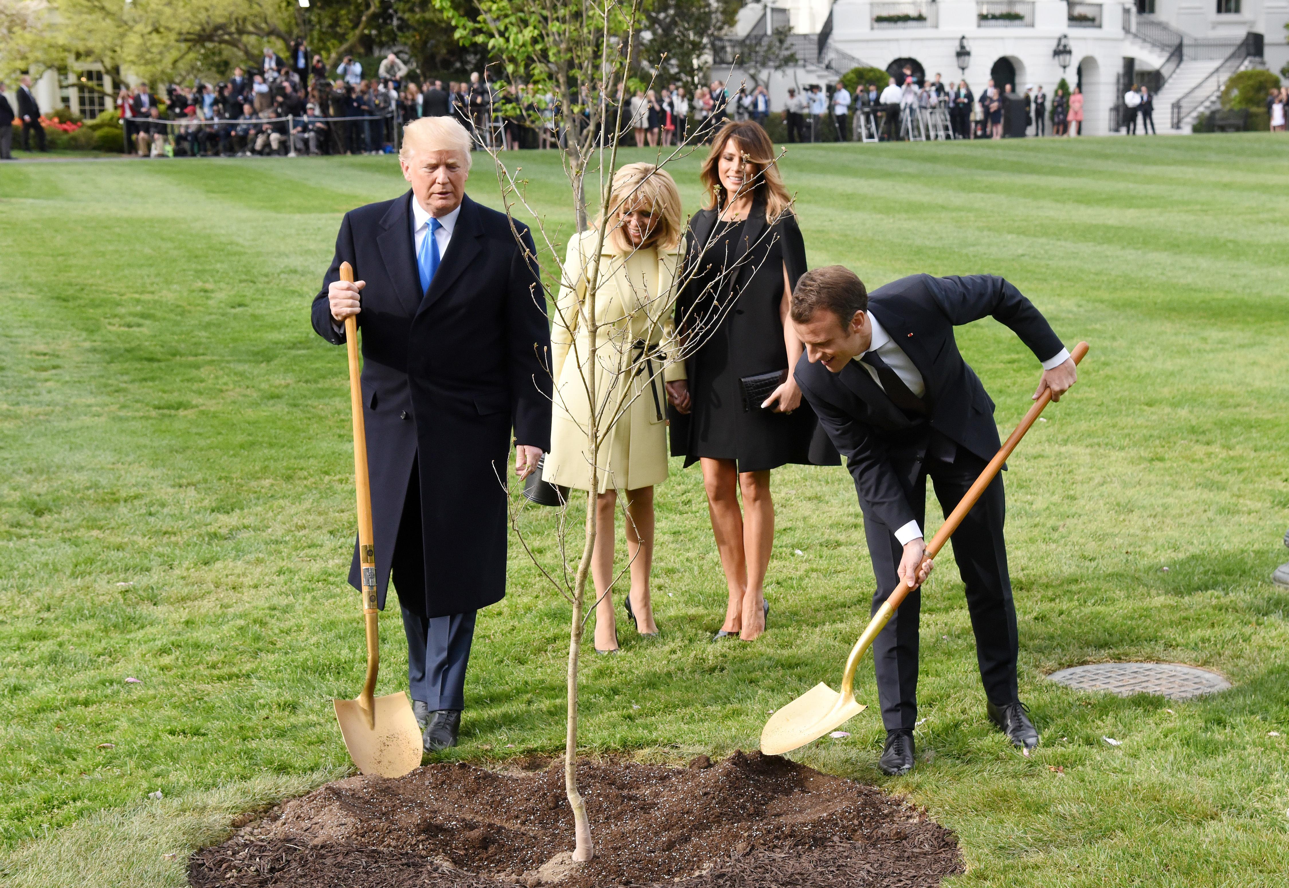 Gestul surprinzător făcut de Macron după ce s-a uscat stejarul plantat alături de Trump pe peluza Casei Albe