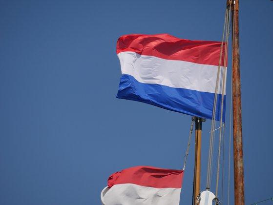 Imaginea articolului Ambasada Olandei, în cazul fetiţei ucise: Autorităţile din ambele ţări sunt în contact direct