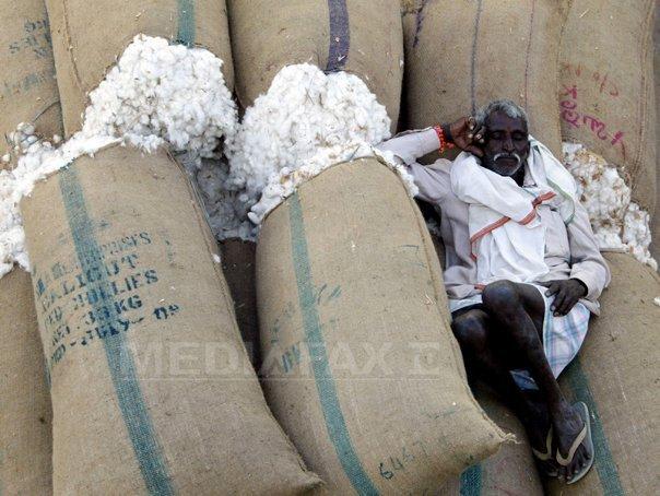 Preţul mondial al bumbacului a sărit în aer. Ce efecte produce nedorita creştere
