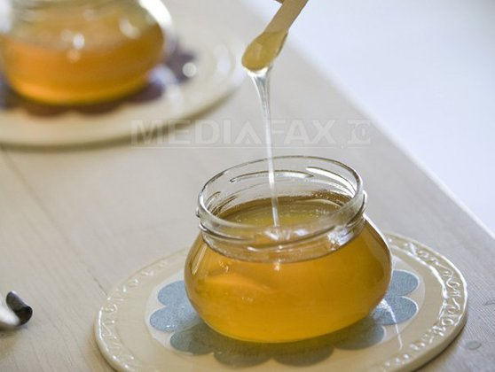 Imaginea articolului Deputaţii au adoptat legea privind acordarea de miere de albine ca supliment nutritiv pentru elevi
