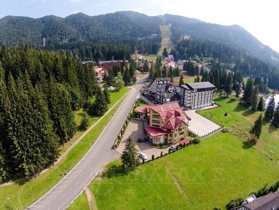 Imaginea articolului La începutul sezonului turistic, SPITALE din zone montane frecventate de români nu au ser antiviperin. Manager: Doamne fereşte să apară muşcătură de viperă