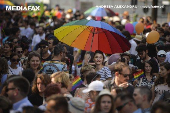 Imaginea articolului MITINGURI pro şi contra comunităţii LGBT astăzi în Capitală/ Jandarmeria asigură ordinea în teren