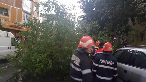 Imaginea articolului Ploile au provocat pagube în Bucureşti şi în ţară: Zeci de copaci căzuţi pe carosabil şi pe autoturisme/ Schele de construcţii, spulberate de vânt în Capitală