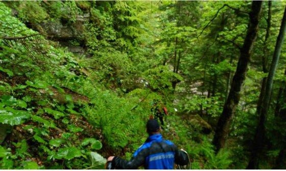 Imaginea articolului Intervenţie a salvamontiştilor din Buşteni, pentru recuperarea a 35 de copii blocaţi pe munte