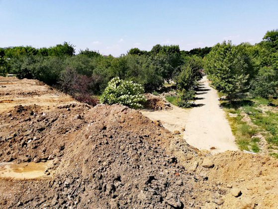 Imaginea articolului Sesizare la Parchet după ce Primăria Sectorului 3 a depozitat pământ şi moloz în Parcul Pantelimon/ FOTO