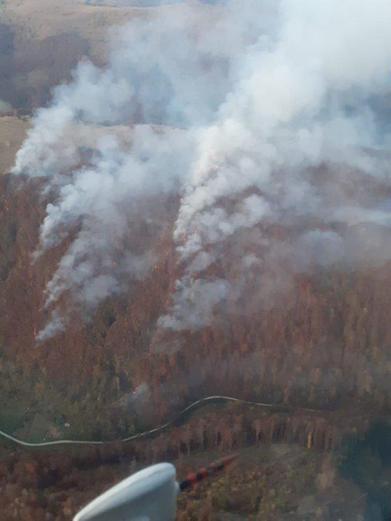 Imaginea articolului Intervenţie a pompierilor din Alba la un incendiu de pădure, în Munţii Apuseni: Flăcările au distrus trei hectare