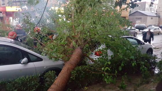 Imaginea articolului Bilanţ după furtună: Zeci de acoperişuri desprinse, 13 maşini afectate şi 7 copaci căzuţi
