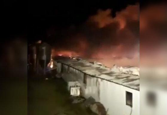 Imaginea articolului Tragedie în Buzău. Sute de animale au murit într-un incendiu violent izbucnit la un adăpost / Prima ipoteză a pompierilor | VIDEO