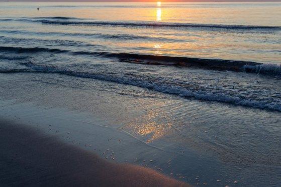 Imaginea articolului Bărbat înecat, găsită pe o plajă din Constanţa. Victima nu a fost identificată