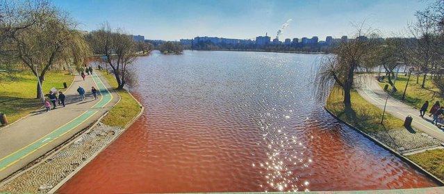 Organizaţie de mediu: Lacul IOR este poluat cu fecale. Avertisment pentru populaţie|EpicNews