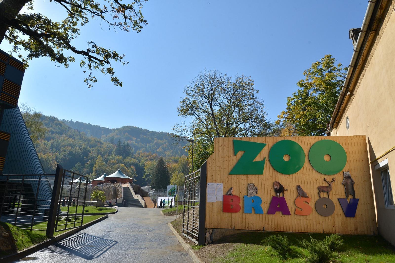 Premieră la Braşov. La Grădina Zoologică vizitatorii primesc lecţii despre animalele sălbatice