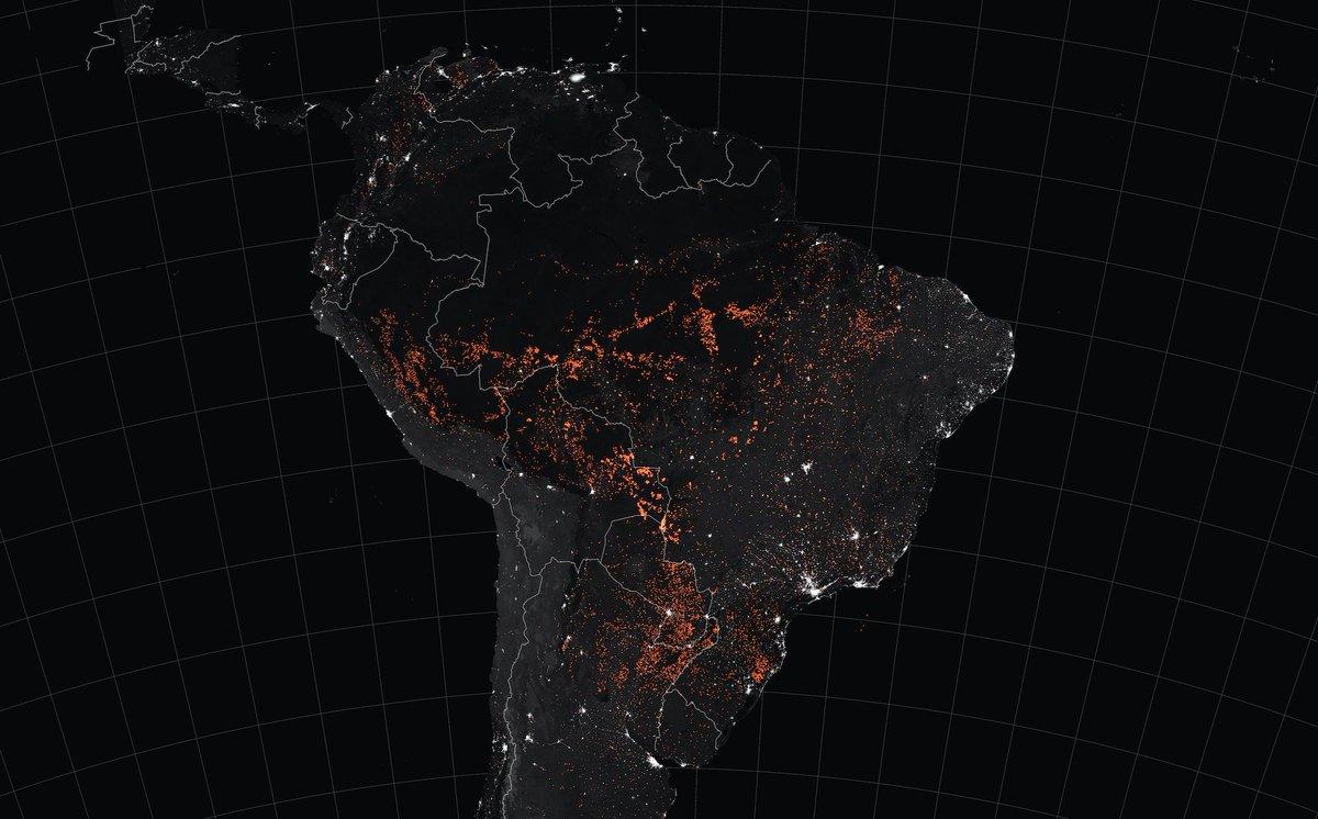 Incendiile din AMAZON, o catastrofă de mediu