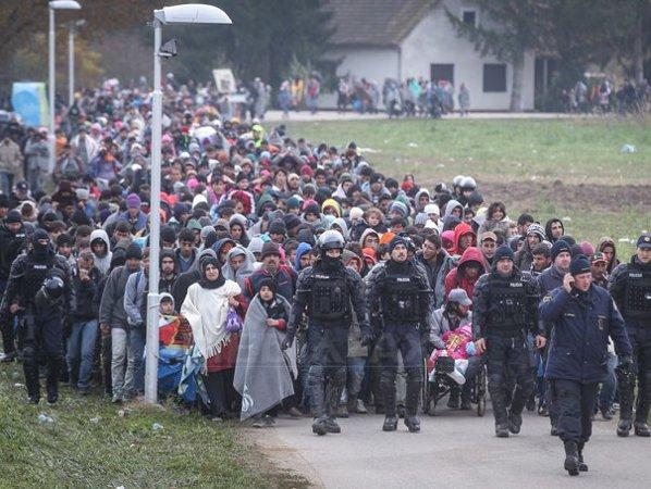PUHOIUL DE REFUGIATI : Sute de Mii de imigranți folosesc noua rută din  Balcani în drumul spre Austria și Germania - FOTO, VIDEO - immigrants -  Fluierul.ro