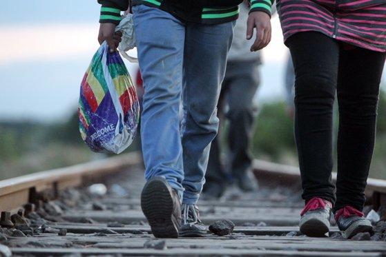 Imaginea articolului Reţea infracţională care transfera imigranţi spre ţări UE, destructurată în Albania
