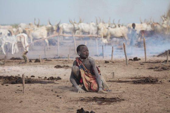 Imaginea articolului ONU avertizează: Riscul de foamete este în continuă creştere la nivel mondial