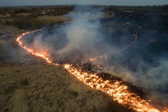 Imaginea articolului Jair Bolsonaro va trimite armata pentru a ajuta la stingerea incendiilor din Pădurea Amazoniană