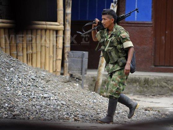 Imaginea articolului Nouă rebeli FARC au fost ucişi vineri în Columbia