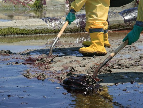 Imaginea articolului Autorităţile investighează scurgerile de petrol care au afectat plajele de nord-estul Braziliei