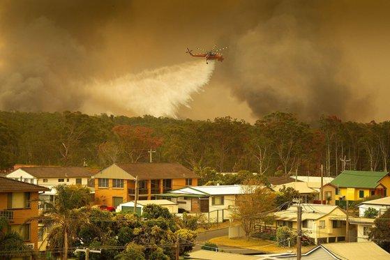 """Imaginea articolului Incendii devastatoare în Australia: Fenomenul, """"fără precedent"""" în statul New South Wales/ Bilanţul victimelor - FOTO, VIDEO"""