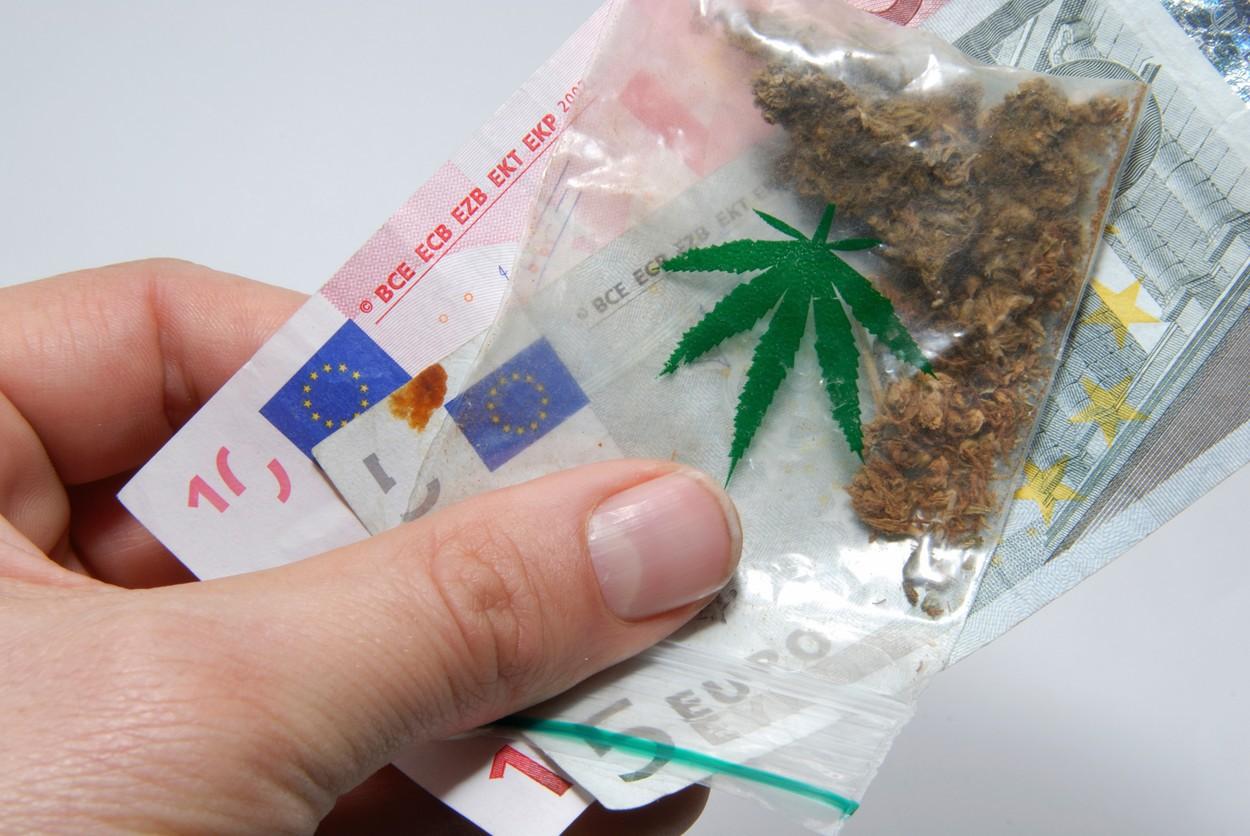 Legalizarea marijuanei. Susţinătorii consumului cannabisului vor să facă un referendum