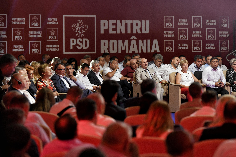 COMENTARIU Crenguţa Nicolae: Cum se face evaluarea la PSD: până să tăiem porcul şi după ce tăiem porcul