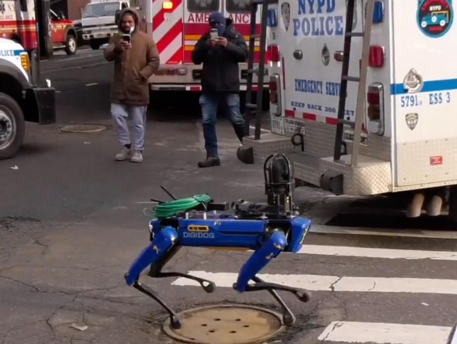 Robotul salvator. Ce e Digidog şi ce face