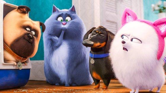 """Imaginea articolului """"The Secret Life of Pets 2/ Singuri acasă 2"""", pe primul loc în box office-ul românesc de weekend   VIDEO"""