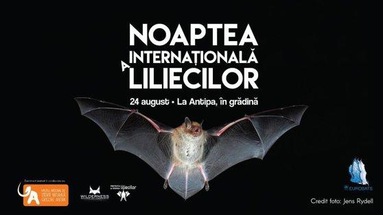 Imaginea articolului Noaptea Internaţională a Liliecilor, sărbătorită la Muzeul Antipa din Bucureşti