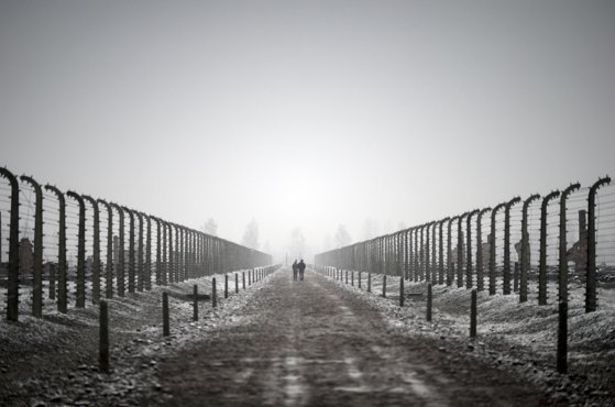 Imaginea articolului FOTO | Figurină cu Iisus trimis la exterminare. Muzeul Auschwitz critică Amazon pentru decoraţiunile de Crăciun cu teme din lagăr