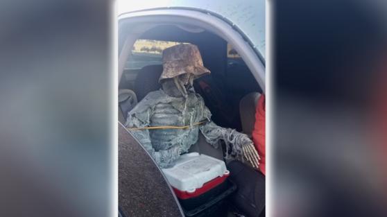 Imaginea articolului Un bărbat a luat un schelet uman în maşină, pe post de pasager. Explicaţia dată poliţiştilor după ce a fost prins