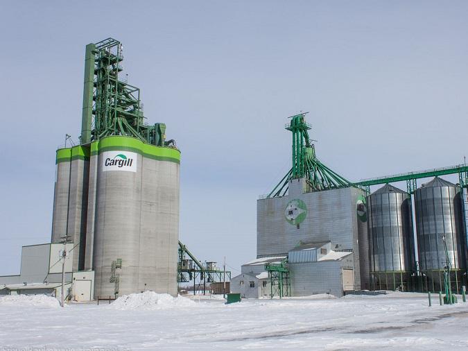Americanii de la Cargill au rămas la 3 mld. lei în 2020, dar au revenit pe profit. Profitul a fost de 31 mil. lei, valoare pe care Cargill nu a  mai atins-o de un deceniu