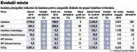 Grafic: Evoluţia principalilor indicatori de business pentru companiile deţinute de grupul Vodafone în România