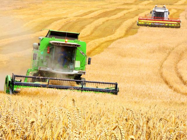 """Prognoză agricolă. Producţia de cereale creşte cu 1,5% în 2017. Emil Dumitru, Pro Agro: """"Este efectul faptului că s-au aplicat tehnologii"""""""