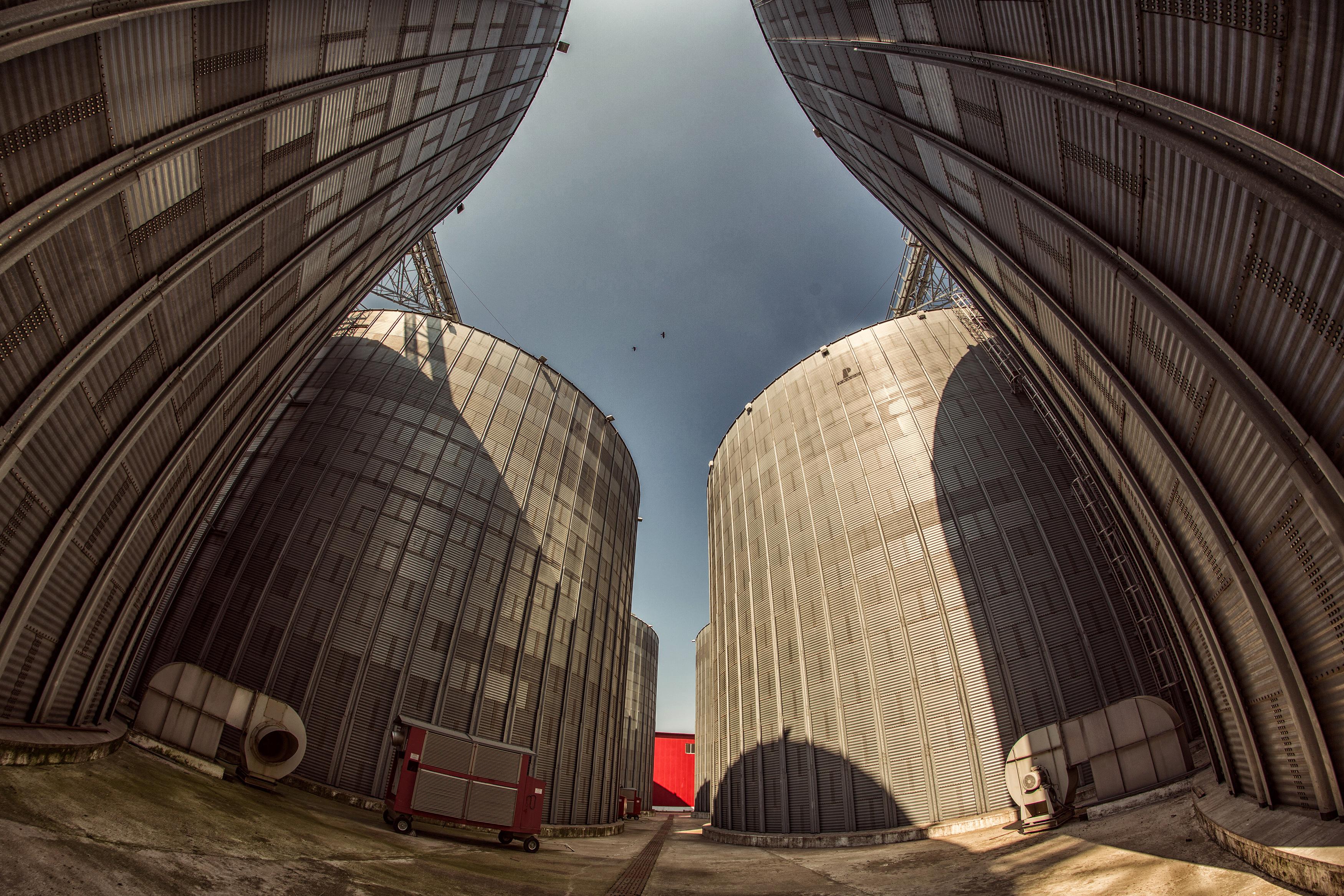 SIFI TM Agro investeşte 1 mil. euro într-un siloz din apropiere de Timişoara, bani care vor merge spre achiziţia unui uscător de cereale