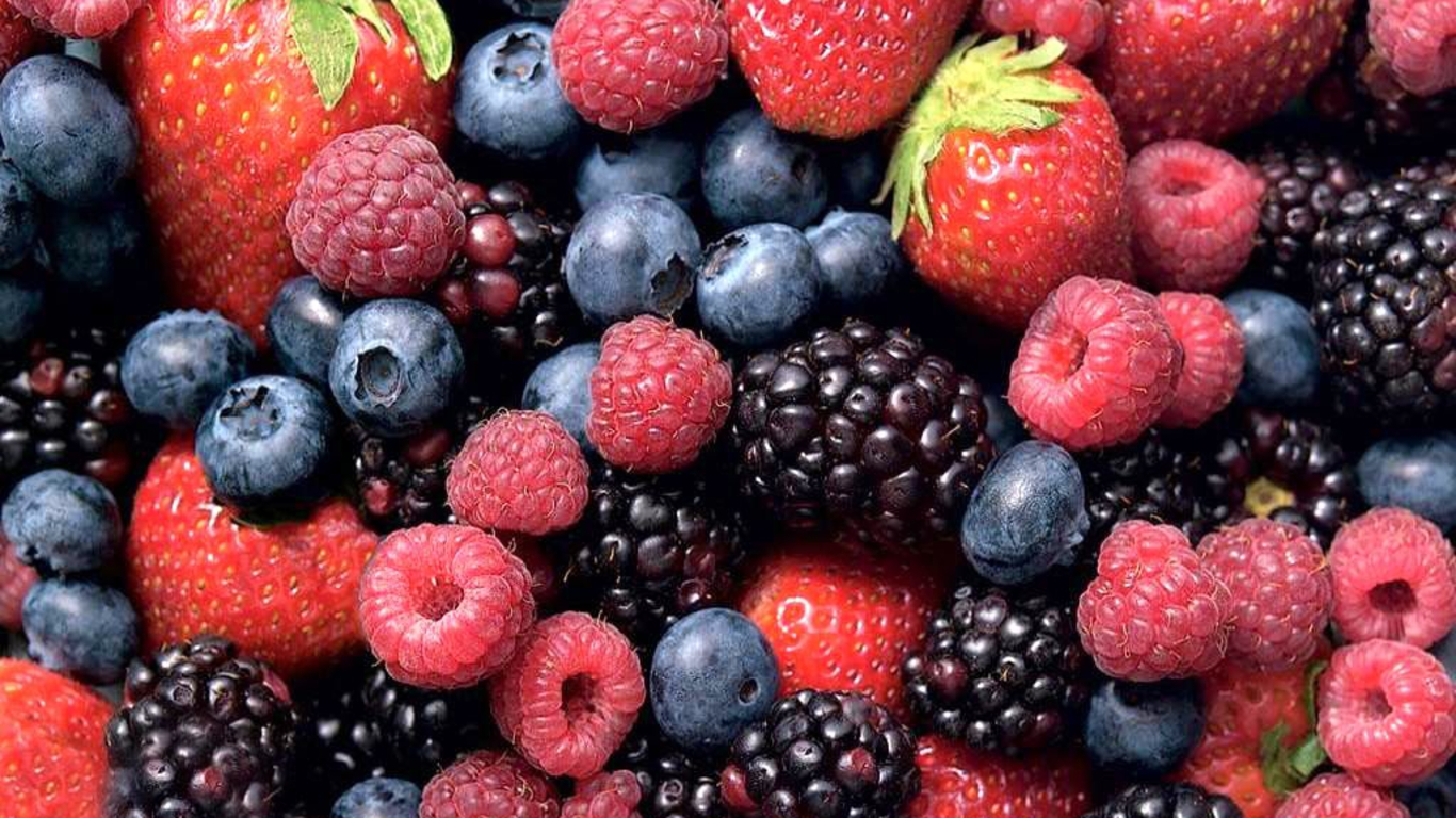 O companie din Bihor a vândut fructe de pădure de 1,7 mil. euro în Carrefour, Profi şi Lidl în al treilea an de la înfiinţare