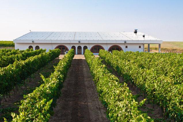 """ZF Agropower. Cum evoluează piaţa locală a vinului. """"Consumatorii de vin vor să meargă acasă la producători să vadă cramele şi plantaţiile de viţă-de-vie şi să se bucure de o experienţă dincolo de eticheta de pe sticlă"""""""