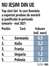 Grafic: Top cinci ţării în care România a exportat produse de morărit şi panificaţie în perioada ianuarie - mai 2021